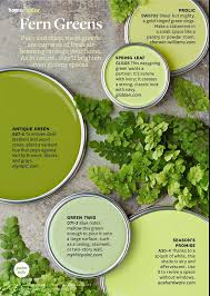 green paint colour ideas. pure and crisp green paint colors to freshen up your home. used colour ideas o