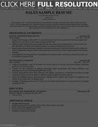 Sales Resume Bullet Points Resume Work Template