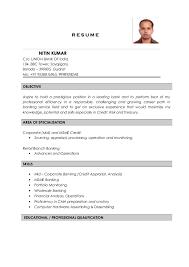 Credit Analyst Resume Example Nitin Kumar Resume Credit Analyst