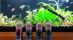 Seachem Planted Aquarium Dosing Chart Wns Flourish Dosing Tips
