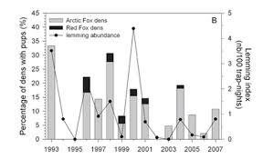 Statistics The Tundra