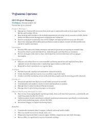 Resume Setup Example Best Digital Marketing Resume Examples Digital Marketing Resume Manager