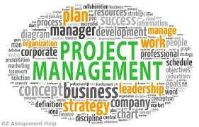 Planning  Planning is an important responsibility of the project managers   It involves the determination of what task to be performed  who is going to      AllAssignmentHelp