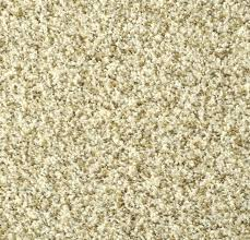 lowes carpet deals frieze fearsome black and tan ideas prices nylon pronunciation stainmaster54