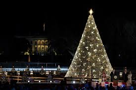 Dc White House Christmas Tree Lighting Trump Lights National Christmas Tree In Holiday Tradition Wtop