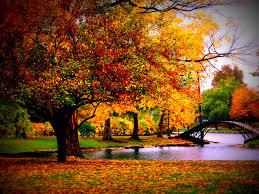 fall nature backgrounds. Fall Scenery Backgrounds Fall-Season-Scenery-Desktop-Wallpaper - Artisans Of Atlanta Nature