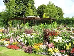 Small Picture Tropical Garden Design Ideas Uk The Garden Inspirations