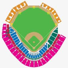 Rays Seating Chart Baseball Stadium Tampa Bay Rays Fundraising Seating Chart