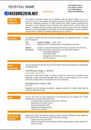 Resume 2017 Examples Ideas About Simple Resume Examples On Simple