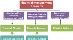 Financial Management Hierarchy Hierarchystructure Com