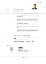 Scaffolding Job Description For Resume