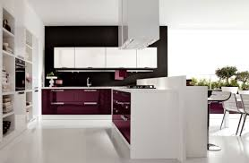 Lavender Kitchen Designs  Quicuacom - White modern kitchen