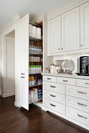 Image Pantry Floor To Ceiling Pull Out Pantry Cabinet Decorpad Floor To Ceiling Pull Out Pantry Cabinet Transitional Kitchen