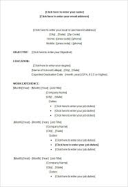 Resume Templates For Microsoft Word 14 19 Template Experience