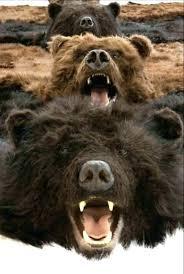 fake bear skin rug faux bear rug ikea faux bear skin rug