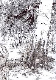 Drawings Of Phoenix Phoenix In A Birch Forest Thomas Schmall