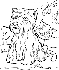 Nieuw Hond En Kat Kleurplaat Krijg Duizenden Kleurenfotos Van De