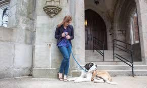 Meet Trailblazer Andrea McDonnell – Boston Voyager Magazine ...