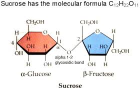 table sugar sucrose sucrose a disaccharide
