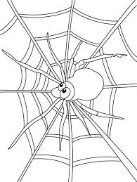 Small Picture Spider Watch for Insect on Spider Web Coloring Page Color Luna