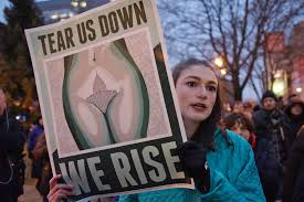 protest essay n democracy essay feminists should not be content  photo essay what democracy looks like the milwaukee independent 012017 inaugurationprotest 0195p