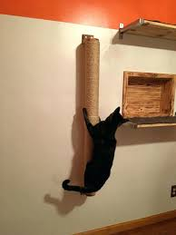 wall shelves for cats cat climber n cat shelves by on cat wall shelves curved wall wall shelves for cats