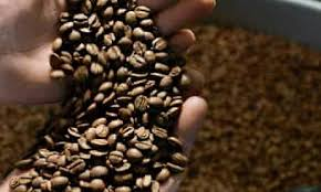 Featuring simple controls to operate the drum and fan motors, heating of the drum and the cooling. Ikawa Coffee Roasting Machines Are Set To Create A Stir Business The Guardian
