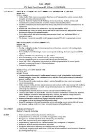 Functional Resume Sample From Free Executive Resume Templates Jospar