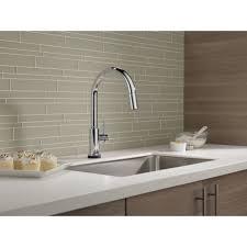 Older Delta Kitchen Faucets Delta Trinsicar Kitchen Single Handle Pull Down Standard Kitchen