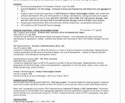 Nice Sap Pi Resume Pattern Documentation Template Example Ideas