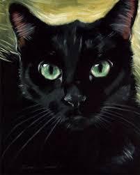 dashing black cat dastan oil painting by diane irvine armitage