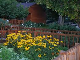 flower gardens pictures. VIEW FROM FRONT FLOWER BED, THRU SIDE BED AND TO CABIN BESIDE MAIN LODGE. NOTE THE BEAUTIFUL WHITE ANGEL TRUMPHET VINE BLOOMS ALONG CABIN. Flower Gardens Pictures S