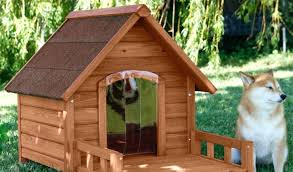 indoor dog house plans for small dogs houses wesome smll s