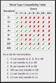 Blood Type Receive Chart Blood Chart For New Players Take A Blood Test And Inside