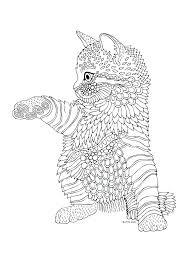 cat mandala coloring pages cat coloring books mandala coloring cat cat mandala coloring pages stock kittens