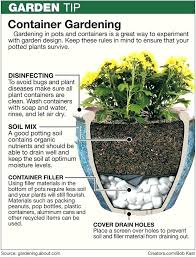 patio plants in pots ideas patio container planting ideas uk pictures concept