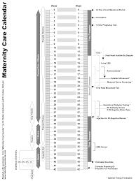 Maternity Calendar Juno Emr Support Portal