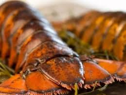 Maine Lobster Tails - Buy Fresh Frozen ...