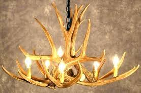 small deer antler chandelier