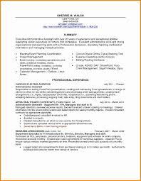 Resume Administrative Assistant Summary Resume Executive Assistant