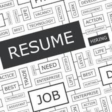Resume Services Simple Professional Resumes Resume Writers Shimmering Careers