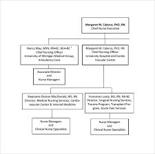 Philippine Heart Center Organizational Chart Sample Hospital Organizational Chart 9 Documents In Pdf