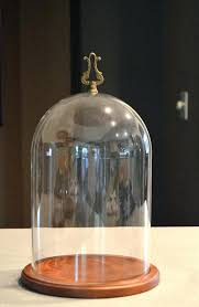 glass dome cloche with brass finial wood base large display case home improvement loans bank of glass dome display