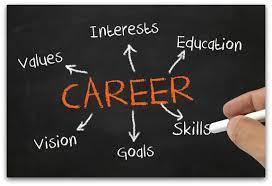 career choice essay choosing a career essay sample