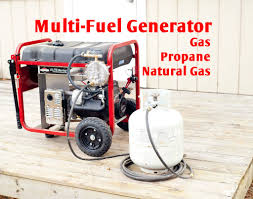 picture of multi fuel generator gas propane ng