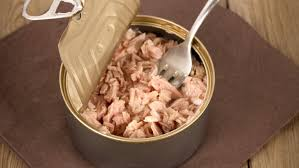Image result for tuna salmon mercury