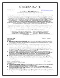 Hotel Resume Example Sales Manager Examples Receptionist Cv | Intexmar