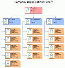 Organizational Chart Template 2 Organizational Chart