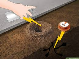 3 Ways To Kill Sugar Ants Wikihow