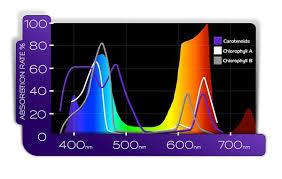 Hps Vs Led Grow Lights The Spectrum Efficiency Showdown